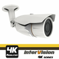 AHD камера InterVision MULLWIDE-3050W